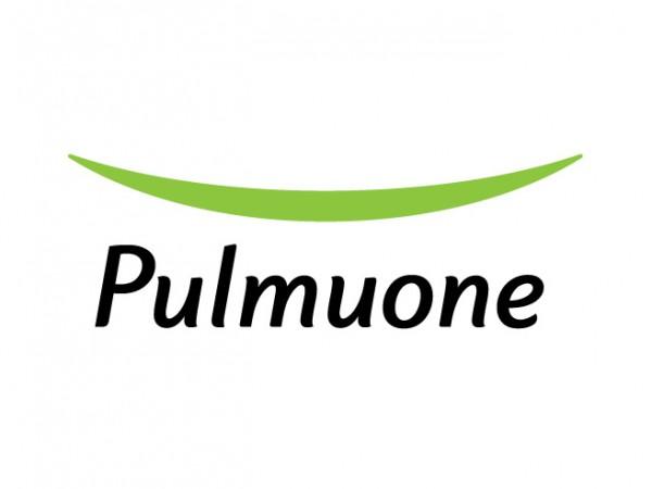 Pulmuone_ci.jpg